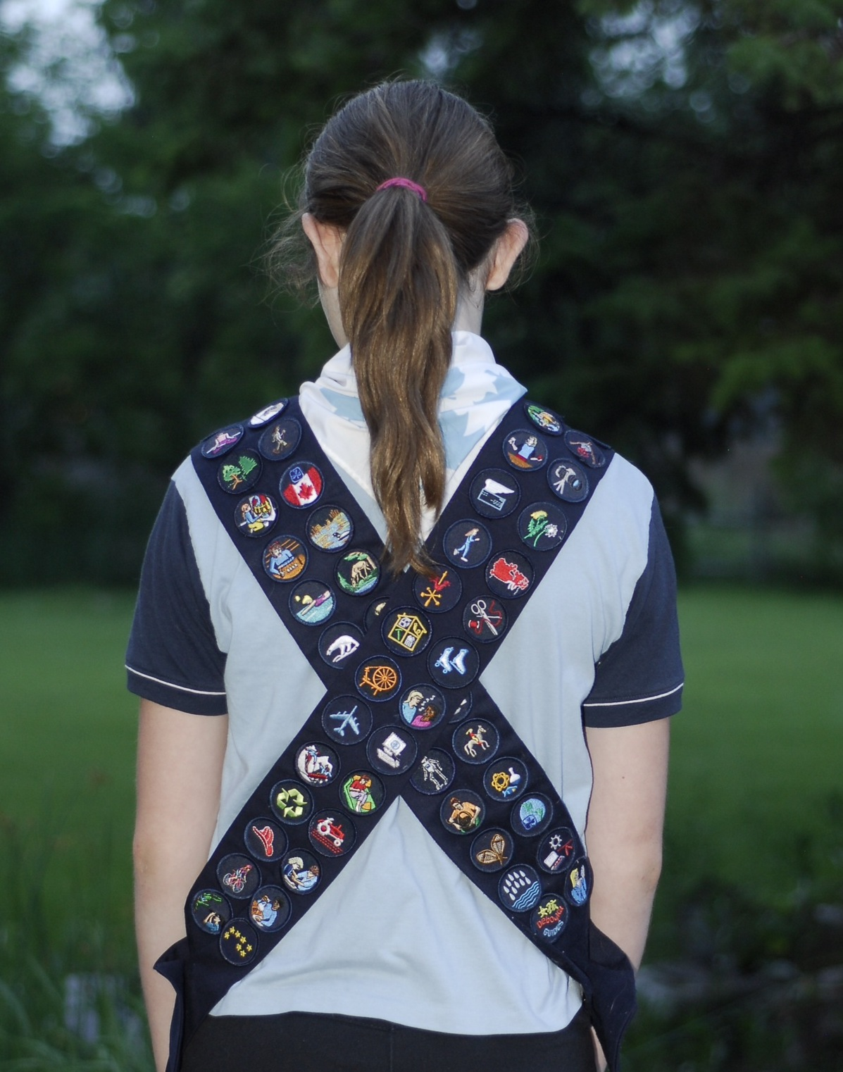badges on sash