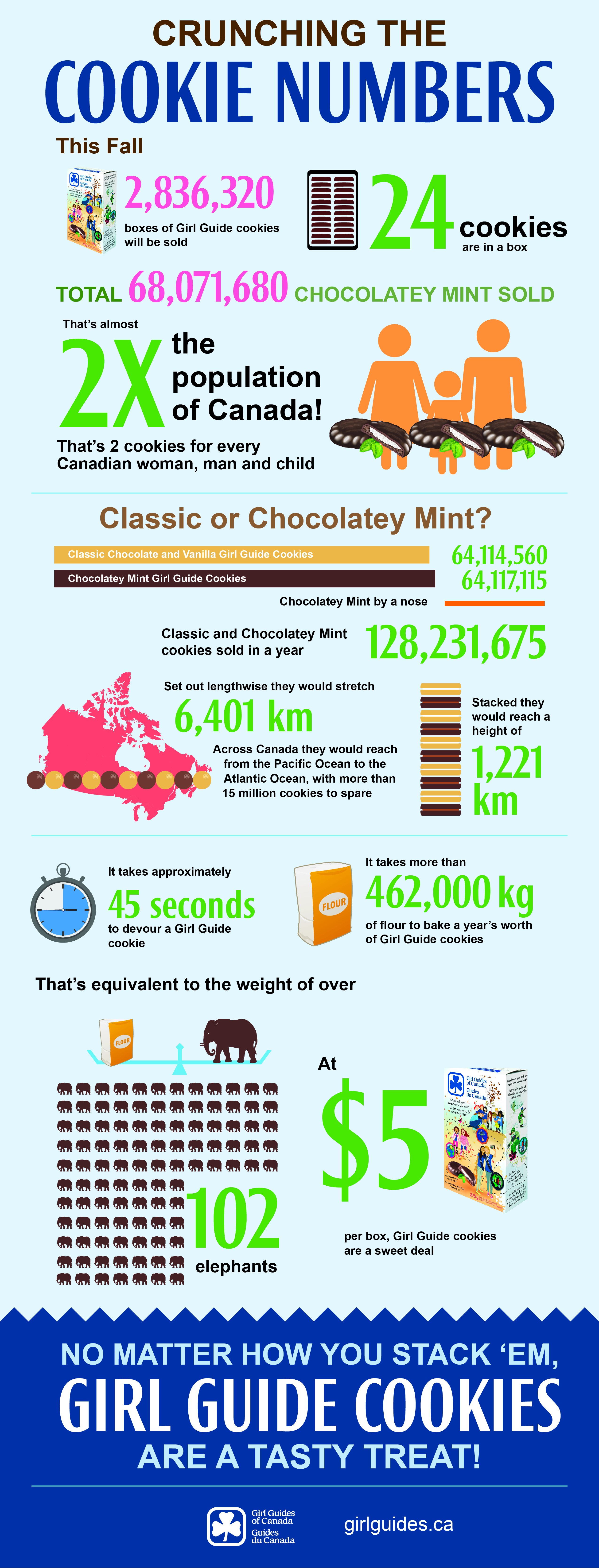 Cookie Infographic Mint 2015